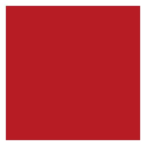 gmaps-icon